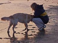 Le chien et l'homme ont une zone de leur cerveau dédiée à la voix