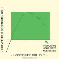 licht voor planten