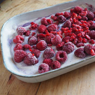 Beeren Tiramisu vegan Rezept Dessert