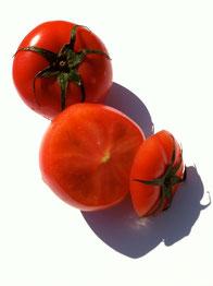 フルーツトマト アグリドリーム トマトソース レシピ