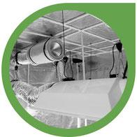 Das Licht bzw. die Höhensonne für den Hanfanbau (Indoor)