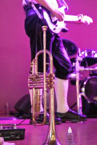 Hochzeitsband, Partyband Dasing - Trompete