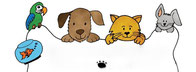 横浜 中区 西区 南区 磯子区 ペットシッター キャットシッター 猫 お留守番 犬 お散歩代行 多頭飼い 自宅 お世話 老猫老犬介護