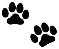 犬 猫 肉球