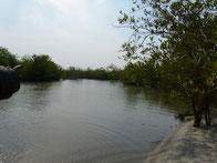 geplante Brücke über Meer Arm zwischen Meyingbé und Taayaki