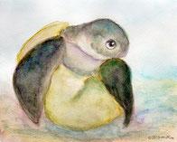 ウミガメの孵化(水彩)