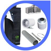 Die optimale Beleuchtung für Cannabis Pflanzen - Anleitung