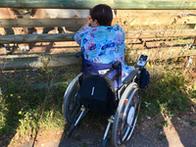 Rollstuhlfahrerin beobachtet Wildpferde