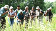 Besucher auf der Suche nach verschiedenen Tier- und Pflanzenarten