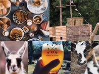 Tips voor Fietsers - Fietsen in en om Antwerpse Kempen 2021 - Kinderboerderij De Lentehei