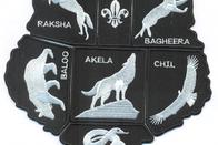 Akela, lider de la manada