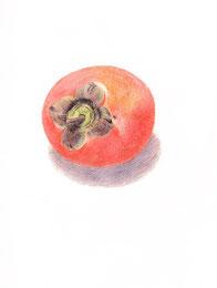 Kakifrucht, 2011