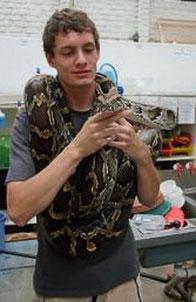 Volunteer handling snake