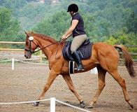 Beth Ann Parise Berwanger riding Kite