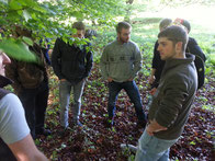 Diskussion im Wald