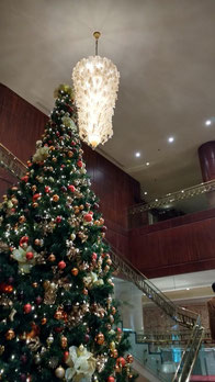 The amazing Christmas tree at the Nile Ritz Carlton, Cairo. Dante Harker