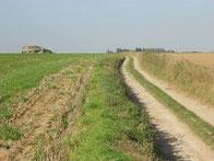 Plaine de Bouvines Sources : lesamisdebouvines.com