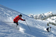 Der Skipass-Verbud AlpenPlusPartner