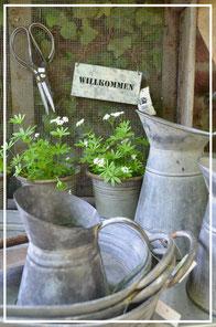Zink, Emaille und Rost Gartendekoration im Laden von Sternschnuppe home & garden in Eichelhardt, Goldwiese 7, 57612 Eichelhardt