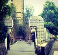 中央大学 門