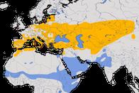 Karte zur Verbreitung des Brachpiepers (Anthus campestris)