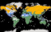 Karte zur Verbreitung der Stelzen und Pieper