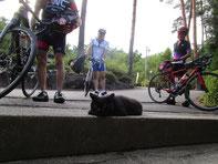 今回のお宿は、檜湯の宿 松柏さんです!看板猫ちゃんがお出迎えしてくれました(≧▽≦)