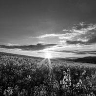 Czech Central Highlands