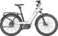 Riese & Müller Nevo SUV e-Bike