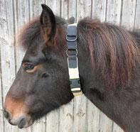 Kombi-Pferdehalsband