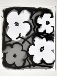 "Ingolf Timpner  ""Flowers"",(IT-Q46)  2010 Light-Drawings / Barytpapier  Papier 61 x 50,8 cm"
