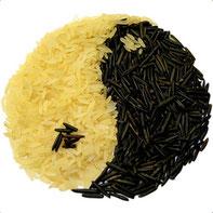 TCM Ernährung Traditionelle Chinesische Medizin
