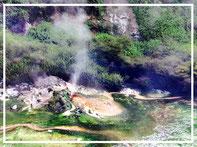 Waimangu Volcanic Way