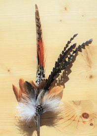 Feder mit Hülse, 30-32 cm