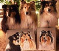 Hundeportrait, Collies sietzen vor ihren eigenen Porträts, Tiermalerei, gemalte Tierportraits nach Fotovorlage, Tiere zeichnen lassen