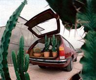 Bietet auch für große Gewächse ausreichend Platz: Opel Commodore Voyage          Foto: Seufert