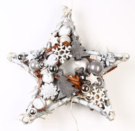 Stern in weiß