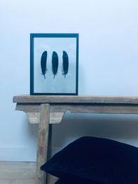cadre plume, déco mur plume