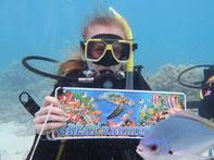 Duiken Great Barrier Reef