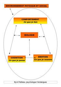 Le symptôme en thérapie cognitvo-comportementale