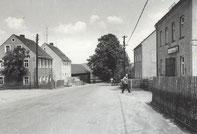 Bild: Teichler Panzerlinde Wünschendorf