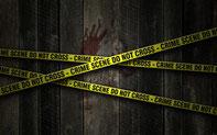 voir la rubrique Policier / Thrillers