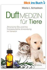 KLICK aufs BILD, um das Buch zu bestellen. (Affiliate Link)