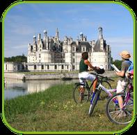 Camping Sites et Paysages Les Saules à Cheverny - Loire Valley - Notre partenaire le domaine national de Chambord