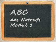 """Bild: Seminar """"ABC des Notrufs"""" Modul 1"""