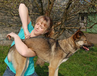 Hundechiropraktik  Hund Chiropraktik Tier  Föhrden-Barl