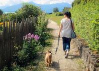 Eine Frau die mit einem Hund spazieren geht