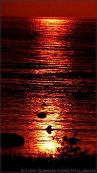...unser erster Sonnenuntergang auf Visby