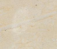 Reinhardtsdorfer Sandstein graugelb