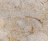 Frickenhäuser Muschelkalk grau gesandstrahlt